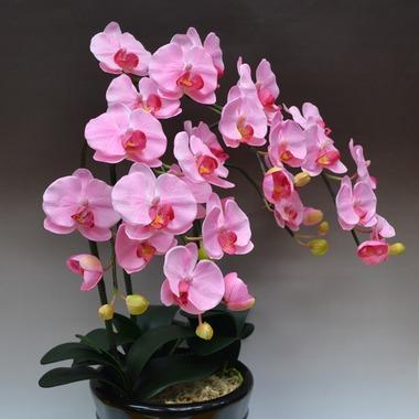 胡蝶蘭の造花